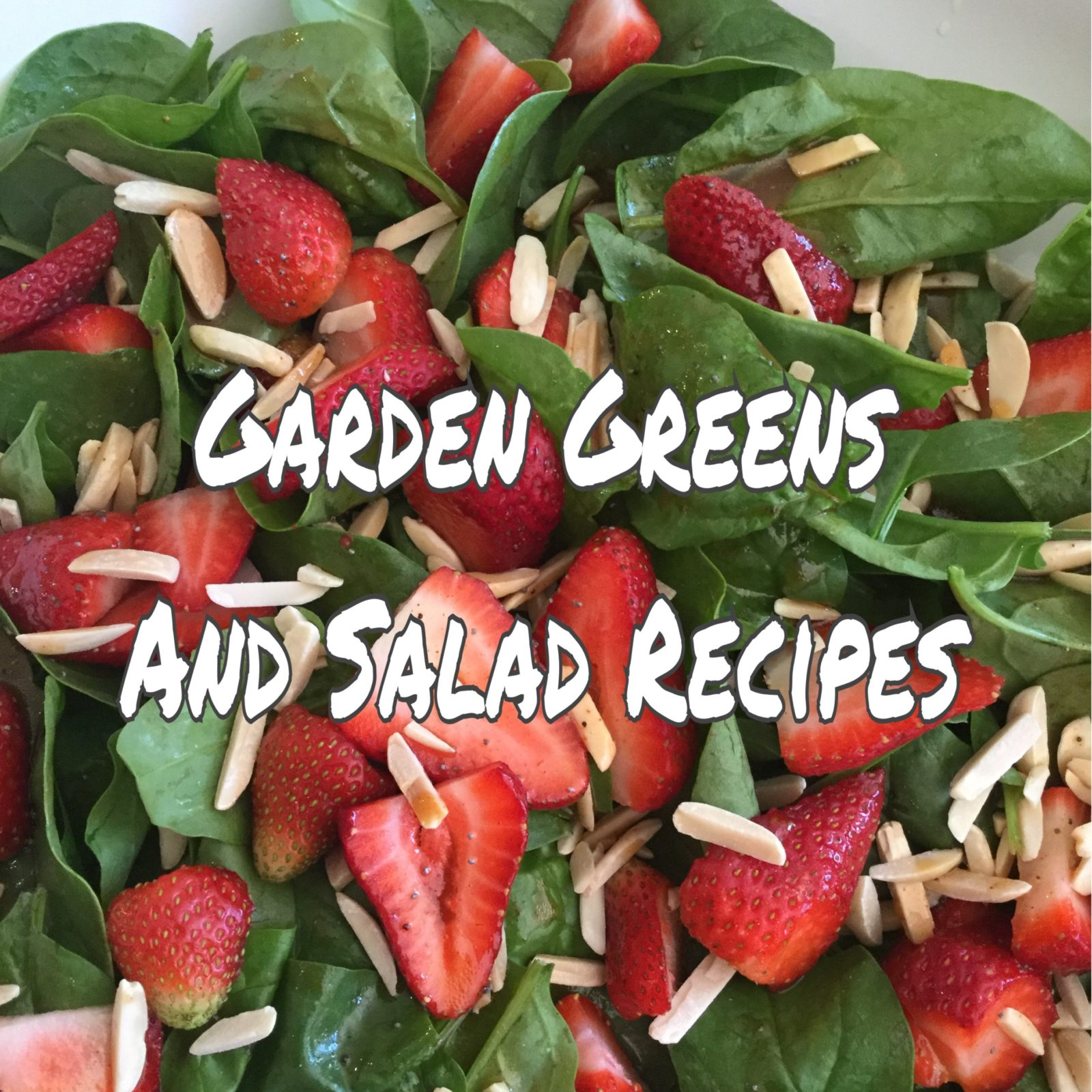 Garden Greens and Salad Recipes