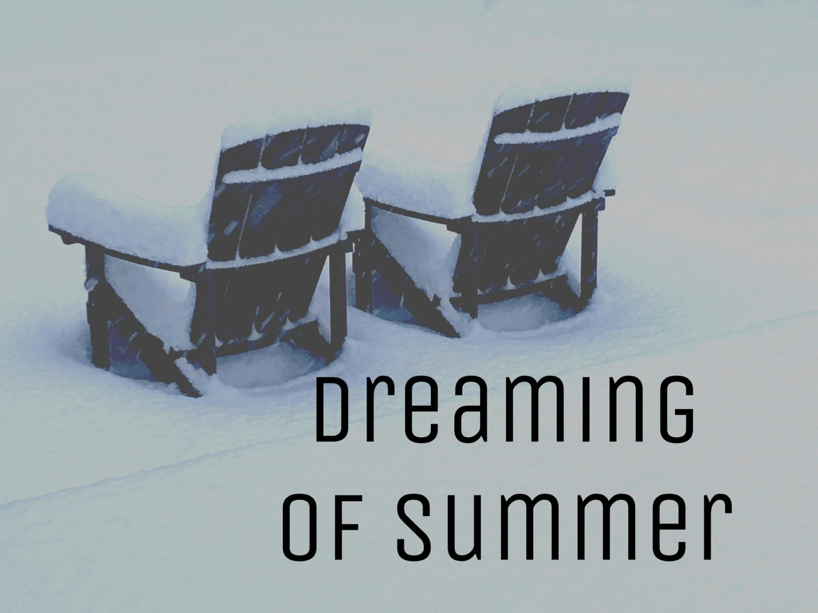 Dreaming of Summer when you live in Minnesota