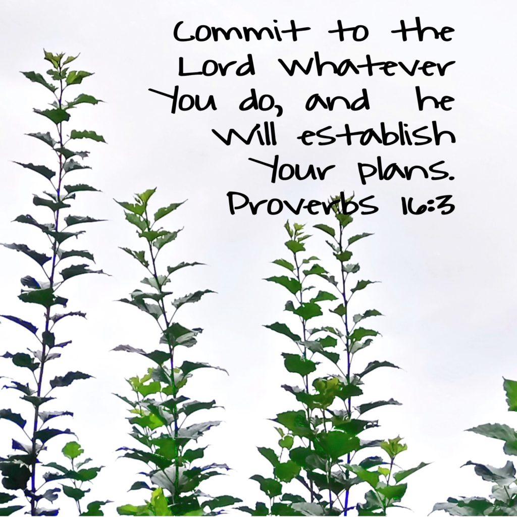 Proverbs Verse