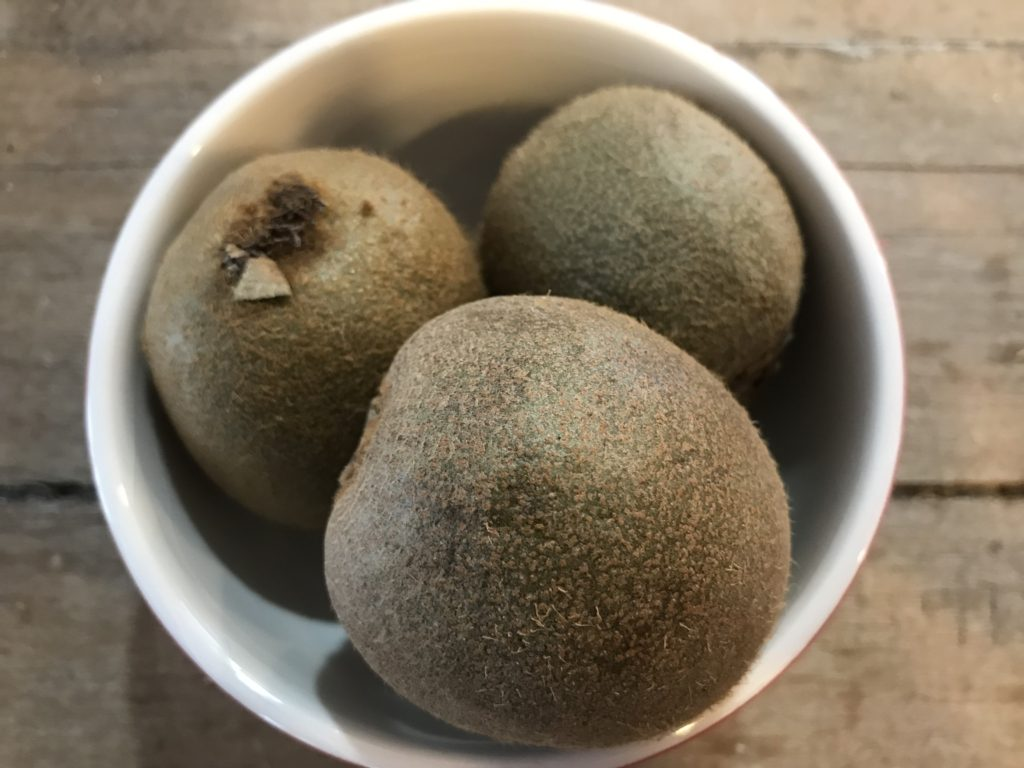 Bowl of Kiwis