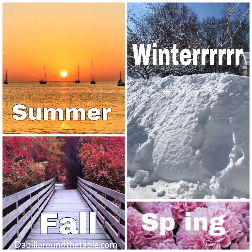 Minnesota Seasons Meme