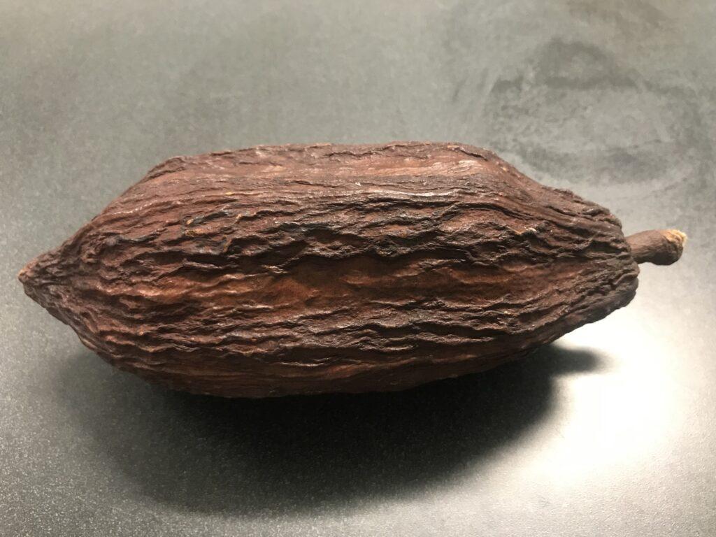 dried pod