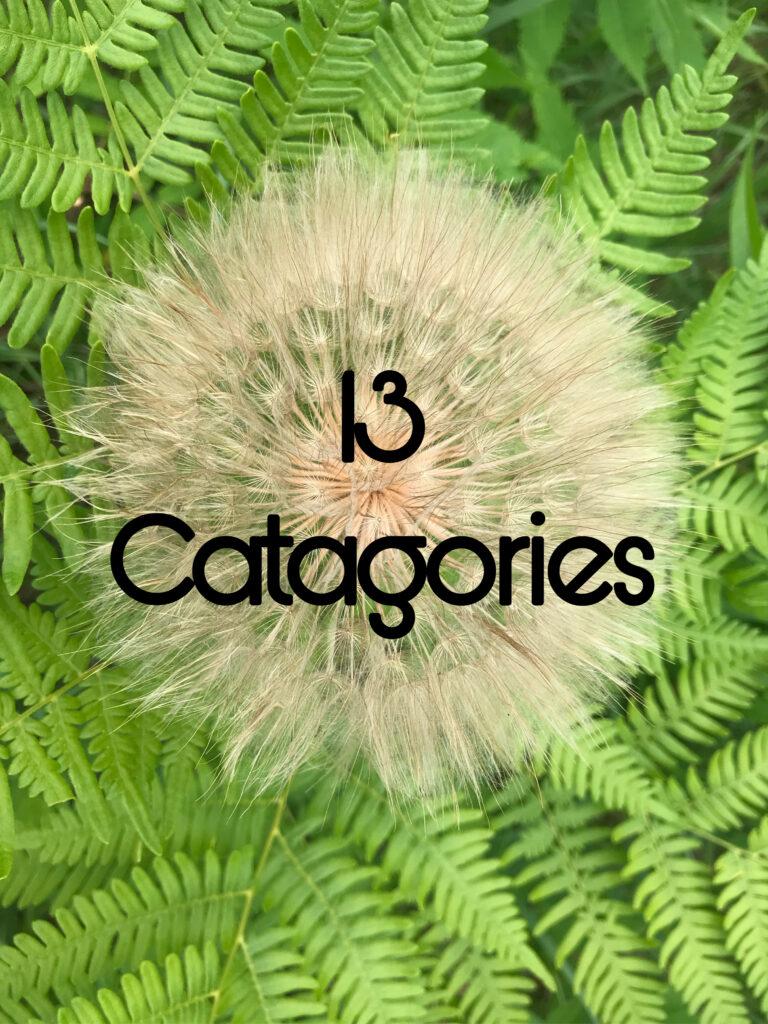 13 Categories